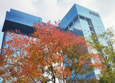 苏州金螳螂园林绿化景观有限公司 企业文化